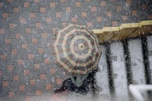 ordinary umbrella by omerphotography