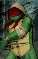 Vision Quest Raph by AlessandraDC