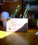 Tater Box by BabyWolverine