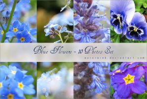 Blue Flower Stock Set by RoryonaRainbow