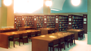 BCM: Library by Auro-Cyanide