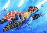 Sea turtle by MoonRayCZ
