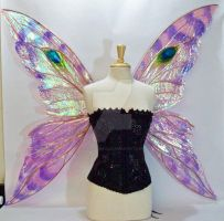 Suzanne Fairy Wings Front by FaeryAzarelle