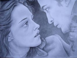 Edward and Bella by fionabird