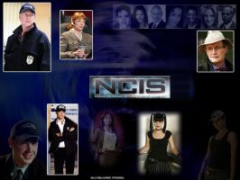 another NCIS by lexiangel29