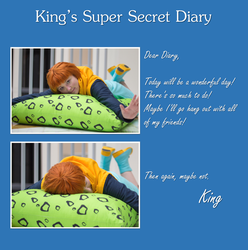 King's Super Secret Diary - Day 1 by ksmurf