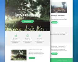 Delize Email PSD Theme Freebie by bestpsdfreebies