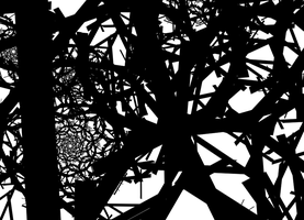 Chaos in fractals III by watarius
