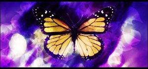 Butterfly by Autumns-Muse