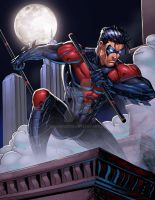 NightWing Red Colors by SaviorsSon
