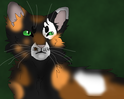 Tawnypelt by TheRealBramblefire