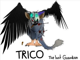 Trico by Fontaene