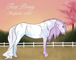 Custom Tea Pony Import 036 by BrindleTail