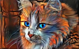 Cats are Soulwarmers  by eReSaW