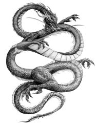 Chinese Dragon sketch by El-Be
