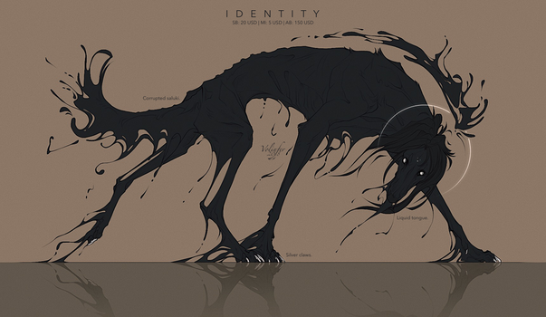 IDENTITY ADOPT AUCTION closed by Volinfer