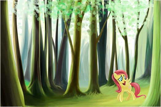 A journey continues by tgolyi