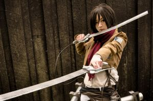 Attack on Titan - Mikasa Ackerman by Ranmaru-Mori