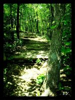 Missouri,Nature Trail 4 by PridesCrossing