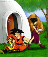 It's a Dragonball, Gohan. by camlost