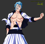 Grimmjow vexel by SanityP