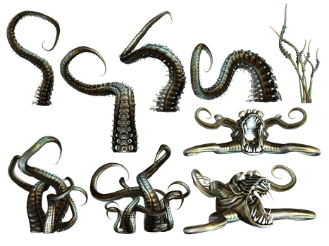 Tentacles PNG Stock by Roy3D