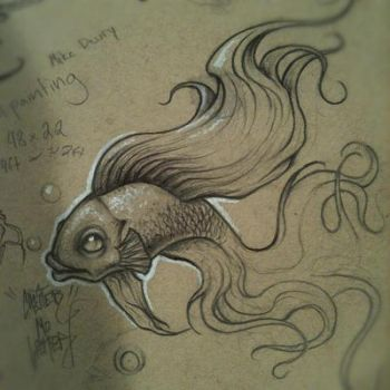 Betta by JordanMendenhall