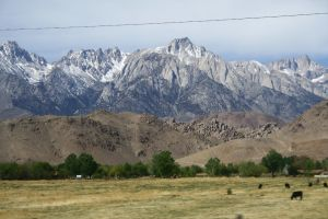 Mountain Range 7 by sharkstock