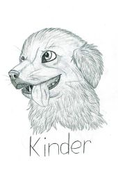 Kinder Drawing for movie-book-leki by UltimateCluckinbell