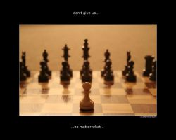 don't give up wallpaper by performant