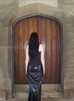 asrei at door by serp-stock