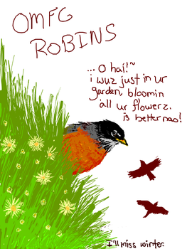OH GOD ROBINS by evanescence
