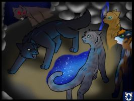 Jayfeather vs. Breezepelt by stories-of-heroes