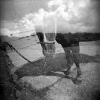 holga horse. by BlackDennie