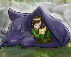 How to Train your Dragon by KamiDiox