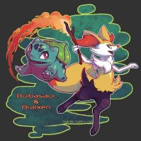 New Adventure: Bulbasaur and Braixen
