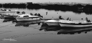 Boats by CantosDePortugal