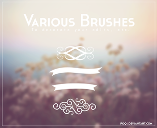 {Various Brushes} by Poqi