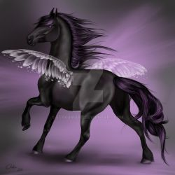 Ebony Wings by EtskuniArt