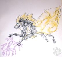 Beast of Storms by InuMimi