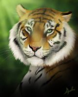 Rengat the Tiger by Chaotica-I