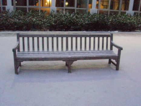 Snowy Bench by SewerRat42