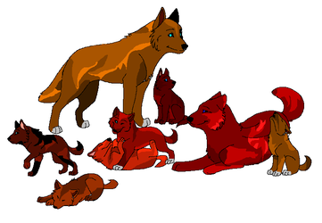 wofl pup adoptibles by Avey-Cee