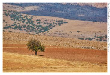 Turkey - through the bus window 2 by Morlen