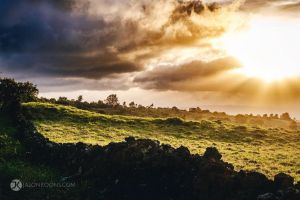 Day's End | Maui by JasonKoons