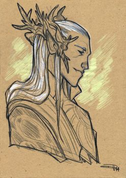 Thranduil by DenisM79