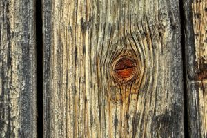 withered plank by Mittelfranke