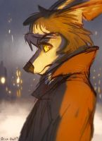 Snowy Night by OrcaOwl
