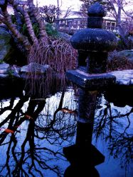 Japanese Tranquility by Esoterically-yours