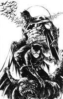 Batman and Catwoman by donnyg4